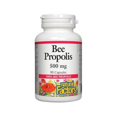 НАТУРАЛ ФАКТОРС ПРОПОЛИС капсули 500 мг. 90 броя / NATURAL FACTORS PROPOLIS